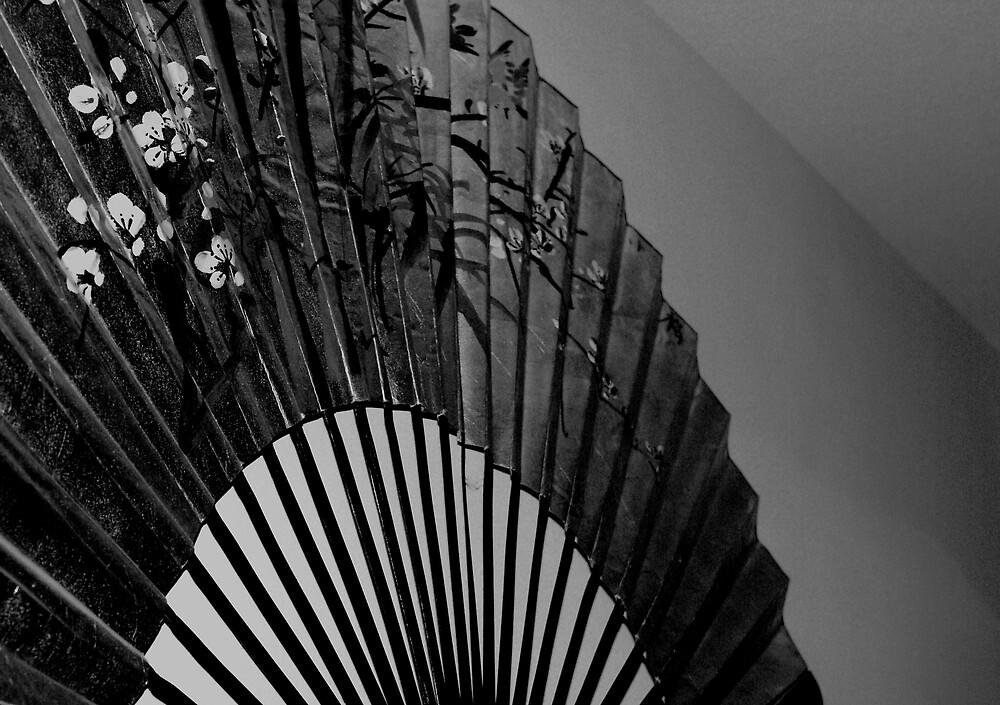 The Big Fan by DavidWayne