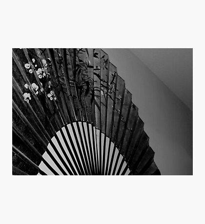 The Big Fan Photographic Print