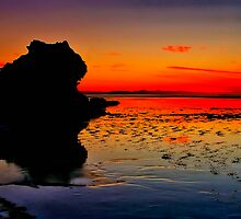 """""""Dawn Reflections on the Receding Tide"""" by Phil Thomson IPA"""