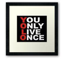 Yolo Items Framed Print
