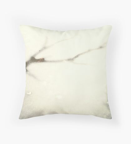 Truth and Reality  Throw Pillow