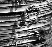 Birch Bark by cfpepperz11