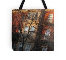winter sunset. brooklyn, nyc Tote Bag