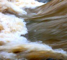 A Skinny dip in a Muddy Creek by lizalady