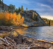 Last Light On Taylor Lake by James Eddy
