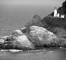 Heceta Head Lighthouse by Rhonda  Thomassen