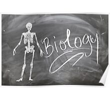 Teachers Biology Chalk Board Photograph Poster