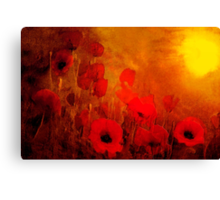 Poppy heaven'... Canvas Print