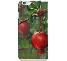 Queen Mary's Pomegranate iPhone Case/Skin