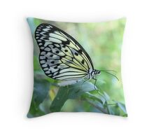 Pretty Butterfly Nature Photography  Throw Pillow