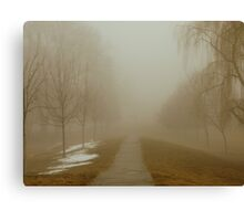 road to eternity Canvas Print