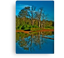 Mirror - Wonga Wetlands, Albury NSW - The HDR Experience Canvas Print