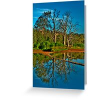 Mirror - Wonga Wetlands, Albury NSW - The HDR Experience Greeting Card