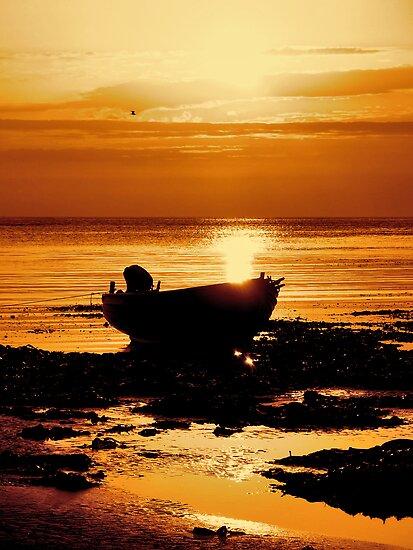 """Golden Tide"" by Bradley Shawn  Rabon"