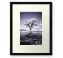 Cloudtree Framed Print