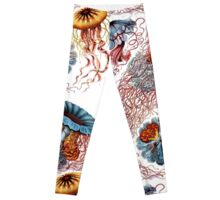 Haeckel Jellyfish Leggings