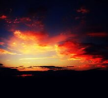 sunset as seen from a moving train by ShellyKay