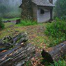 The house of fairtales by Donovan wilson