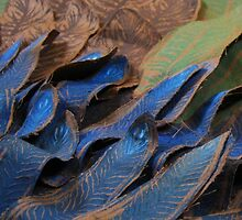 Feathers by ImogenSmid