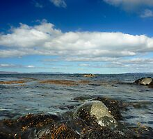 Looking out from Port Mor, Gigha by Richard Ion