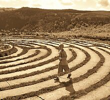 walking the labyrinth in Hogsback by Teresa Schultz