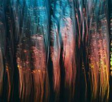 Sparkling Winter Garden by Richard G Witham
