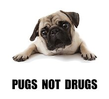 Pugs Not Drugs by TheBestStore
