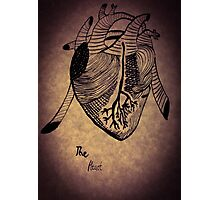 The Heart Photographic Print