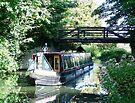 Murrays Bridge,  River Wey Navigation, Byfleet, Surrey by Colin J Williams Photography