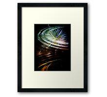 Romantic Interlude Framed Print