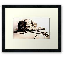 Katie Jane Garside Framed Print