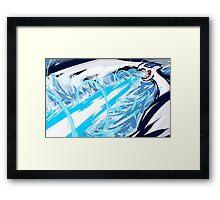 #249 Framed Print