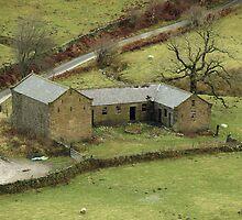 Olde Farmhouse by Franco De Luca Calce