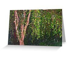 Weeping Willow In The Rain Greeting Card