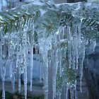 Icicles by Michele Ford
