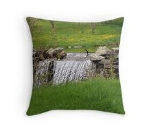 Dandelion Falls Throw Pillow