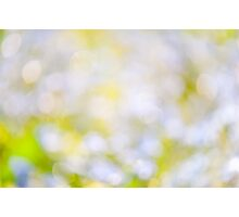 sparkles and circles bokeh abstract  Photographic Print
