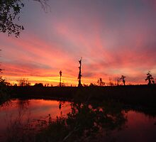 Northwest Florida Sunsets by May Lattanzio