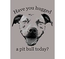 Have you hugged a Pit Bull today? Photographic Print