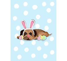 Easter Pug Photographic Print
