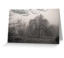 Misty Willow Greeting Card
