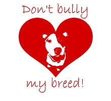 Don't bully my breed! Photographic Print
