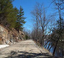 A Road Less Traveled by John Beamish