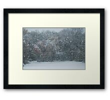 Fall Snowstorm Framed Print