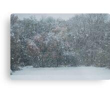 Fall Snowstorm Metal Print