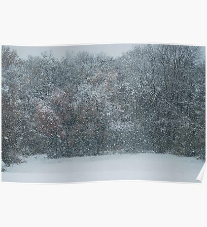 Fall Snowstorm Poster
