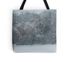 Fall Snowstorm Tote Bag