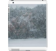 Fall Snowstorm iPad Case/Skin