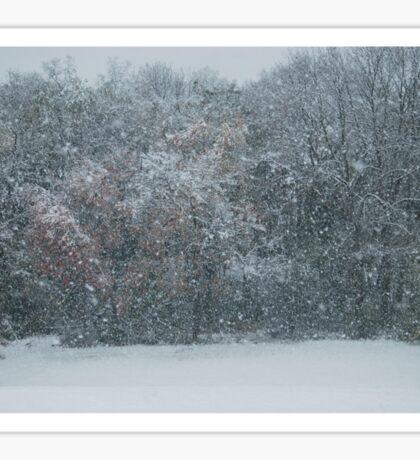 Fall Snowstorm Sticker