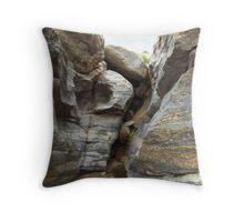 Tucson Mountain Stream Throw Pillow
